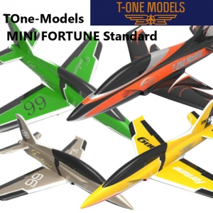 T1 Mini Fortune